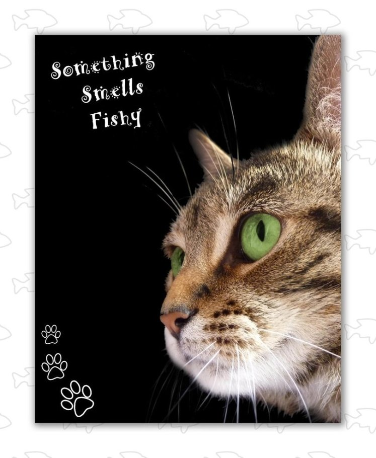 something_smells_fishy_by_worldleaderassasin